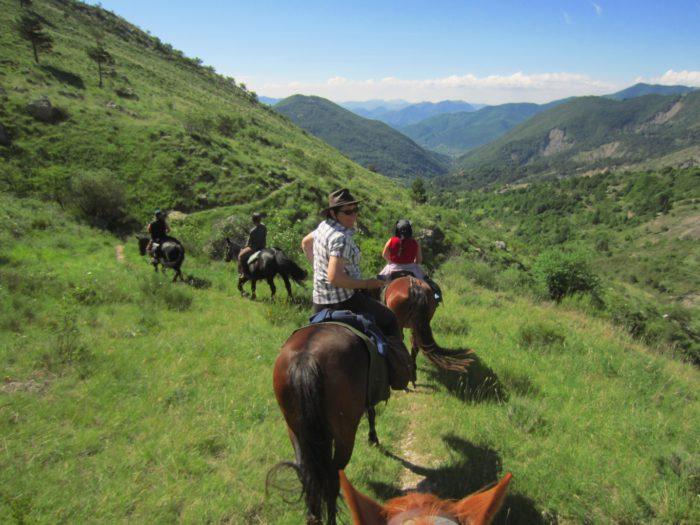 Promenades à Cheval ou dos d'ânes